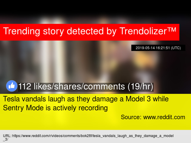 Tesla vandals laugh as they damage a Model 3 while Sentry